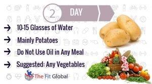 Day 2 GM diet Plan