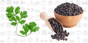 Coriander, Black Peppercorn with Henna