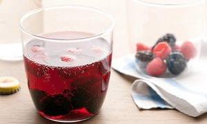 red-wine-berry-spritzer