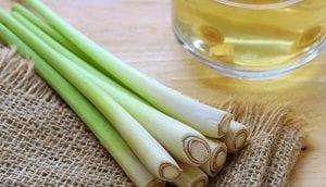 General Benefits Of Lemongrass