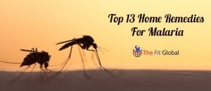 Top 13 Home Remedies For Malaria