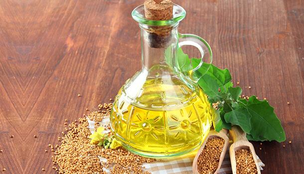 mustrad seed oil