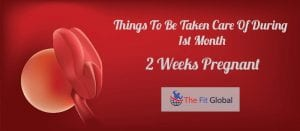 Tips For A 2nd Week Pregnancy Women - Things To Be Taken Care Of During 1st Month
