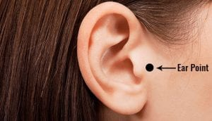 Ear Point or Tragus