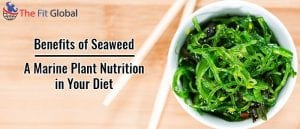 Benefits of Seaweed - A Marine Plant Nutrition in Your Diet
