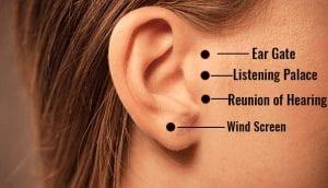 Ear Gate