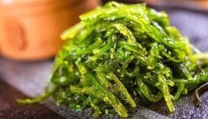 Green Seaweed or Codium Fragile