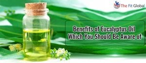 Benefits of Eucalyptus Oil Which You Should Be Aware of