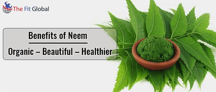 Benefits of Neem are So Unique