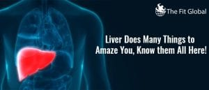 Liver Does Many Things to Amaze You, Know them All Here! 1