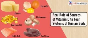 Real Role of Sources of Vitamin D to Four Systems of Human Body