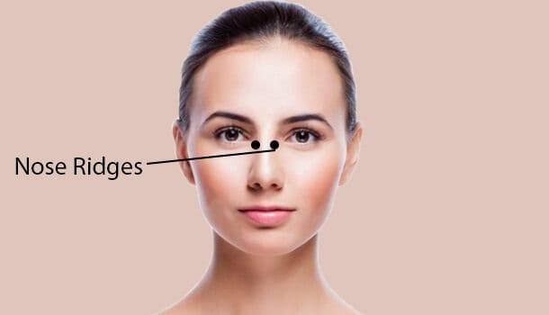 Nose Ridges for sinus