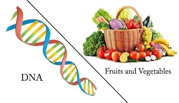 DNA & Fruits