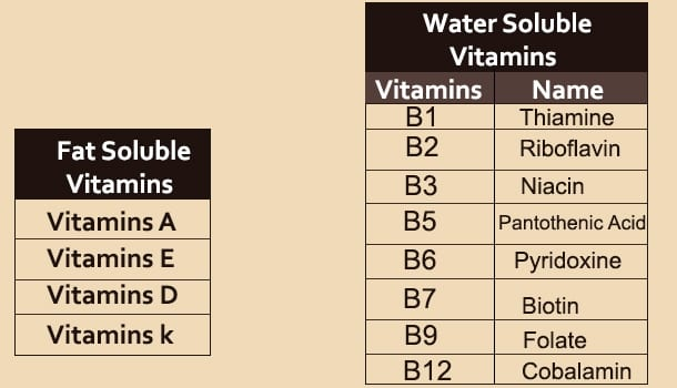 Vitamīns