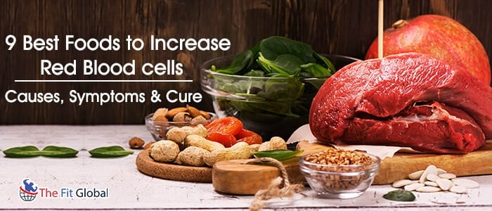 foods to increase red blood cells