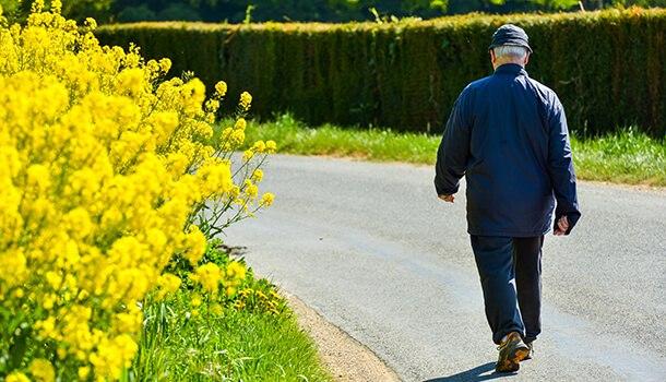 Go For A Morning Jog Or A Regular Walk