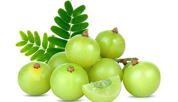 Indian Gooseberry For Nausea