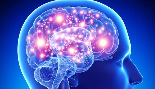 Turmeric Prevents Alzheimers Disease