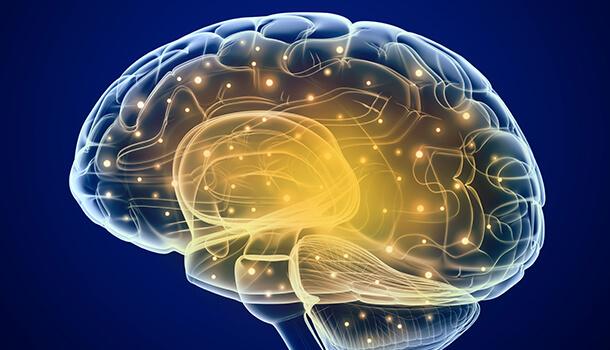 Enhances Your Brain Health On The Overall