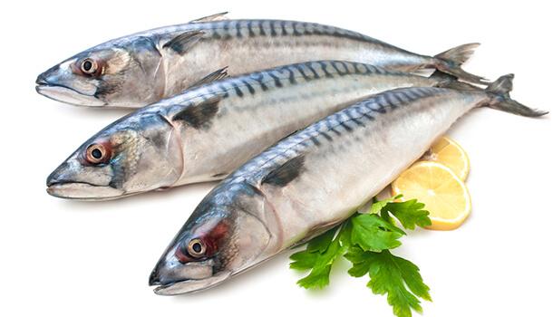 Mackerels - foods high in omega 3