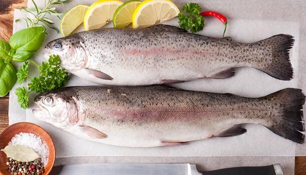 Trout - omega 3 fatty acids
