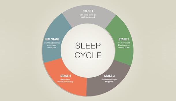 Walnut Benefits Your Sleep Cycle