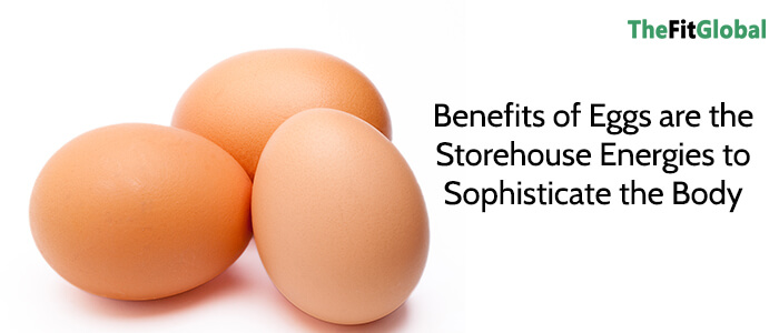Benefits of Eggs are the Storehouse Energies to Sophisticate the Body