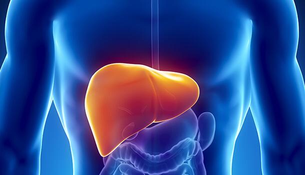 Damage Of Liver