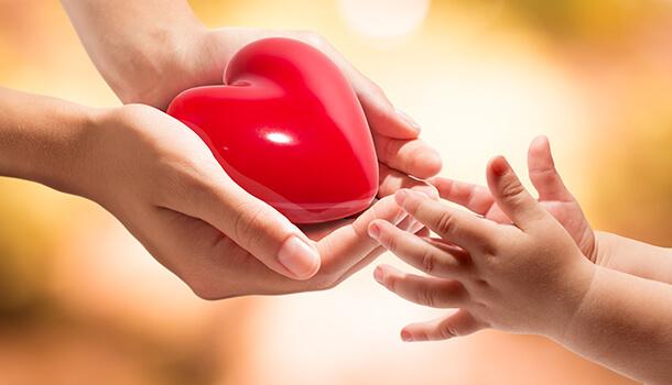 How Cardamom Benefits Heart Health
