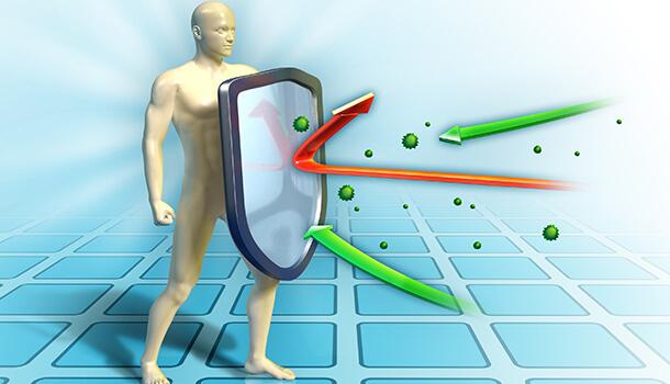 How Cardamom Benefits Immune System